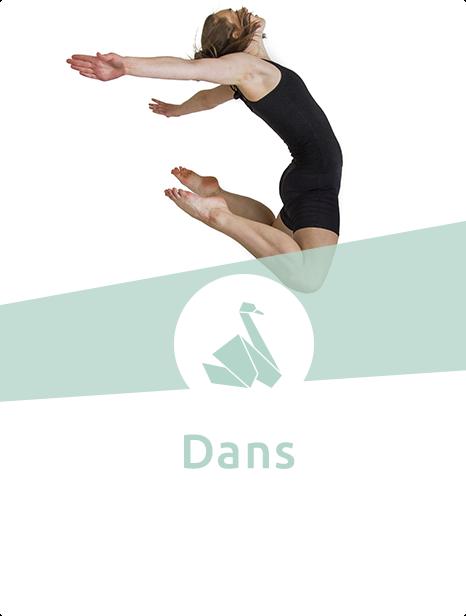 Kom og lær de fede moves til dans her på Svenstrup Efterskole